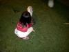 lembang-20110213-00033