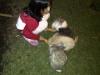 lembang-20110213-00039